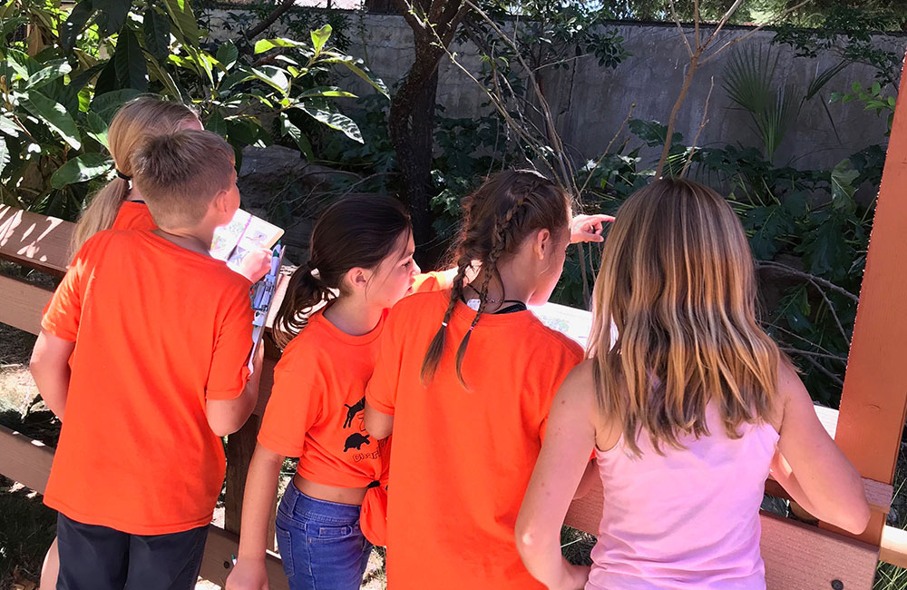 Central Coast Zoo Camps